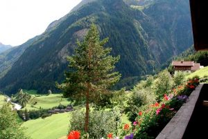Ausblick vom Balkon des Apartments, Stachlerhof, Anna Steiner, Ferien auf dem Bauernhof | Foto: Anna Steiner