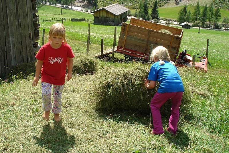 Heu machen, Ferien auf dem Bauernhof, Stachlerhof, Anna Steiner, Foto: Anna Steiner