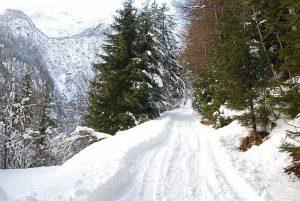 Winterwanderweg | Foto: Anna Steiner